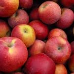 {A Healthy Balance} Celebrate Fall with Apple & Pumpkin Recipes