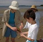 Free Family Fun on Duxbury Beach