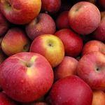 30 Amazing Apple Recipes