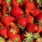 Around Town - Strawberry Festivals 2015