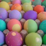 South Shore Easter Events 2016