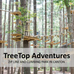 TreeTop Adventures in Canton