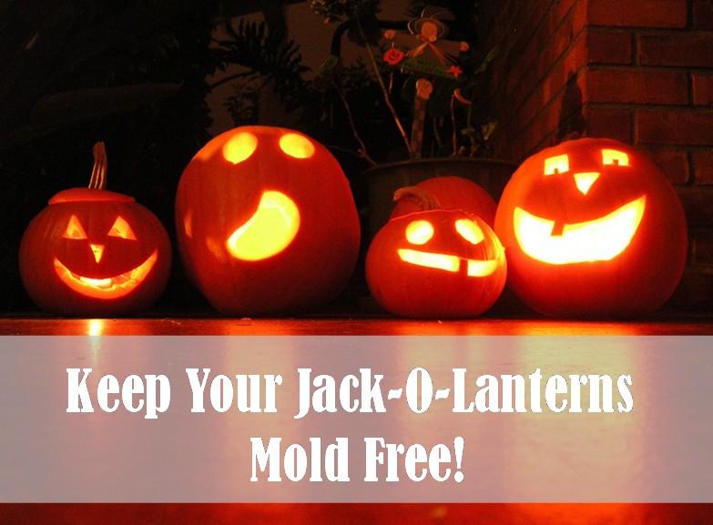 mold-free