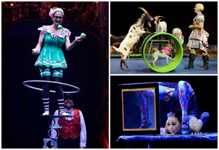circus collage 1