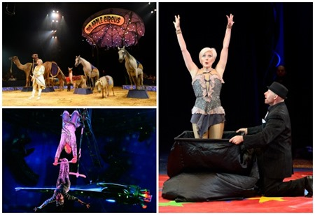 circus collage 2