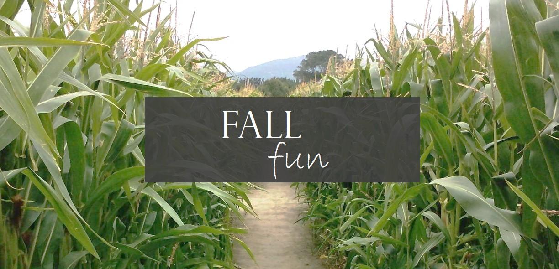 fall fun events
